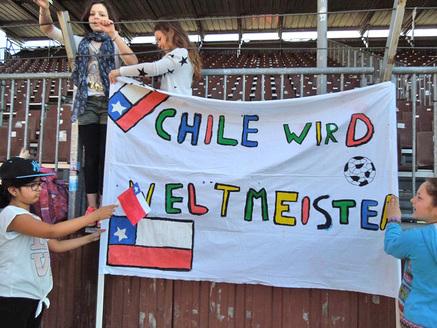 Mini WM 2014